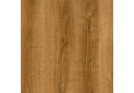 Vitro Selection Summer oak 24867