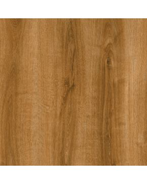 Vitro Selection Summer oak 24867