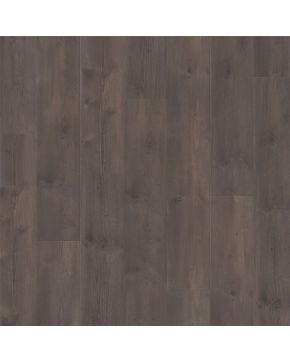 Balterio Lanýžová Borovice TRD61013