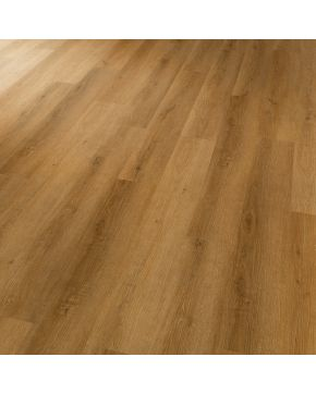 Karndean vinylová podlaha Conceptline 30122 Dub zlatý