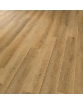 Karndean vinylová podlaha Projectline Acoustic Click 55221 4V Dub Symfonie